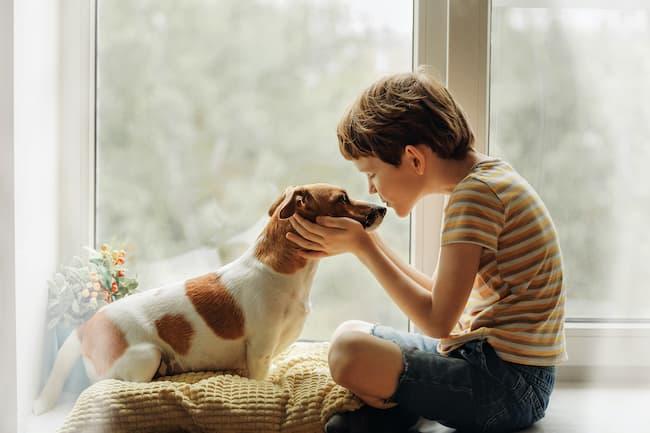 children pet loss grief