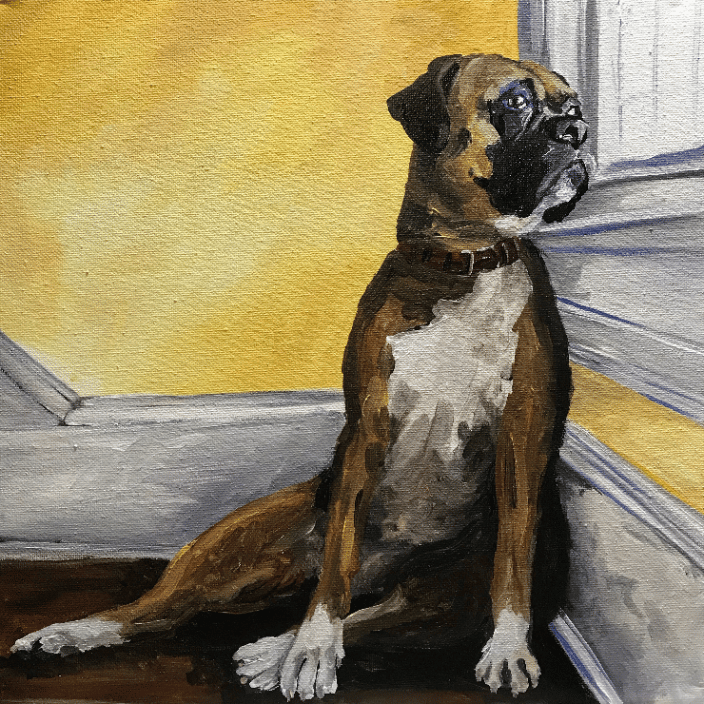 12x12 pet portrait