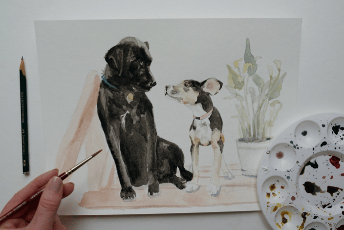 Dogs Pet Portrait