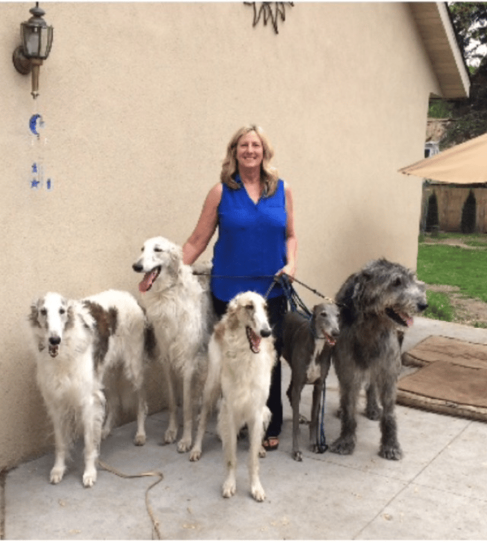 Rita and Sighthounds